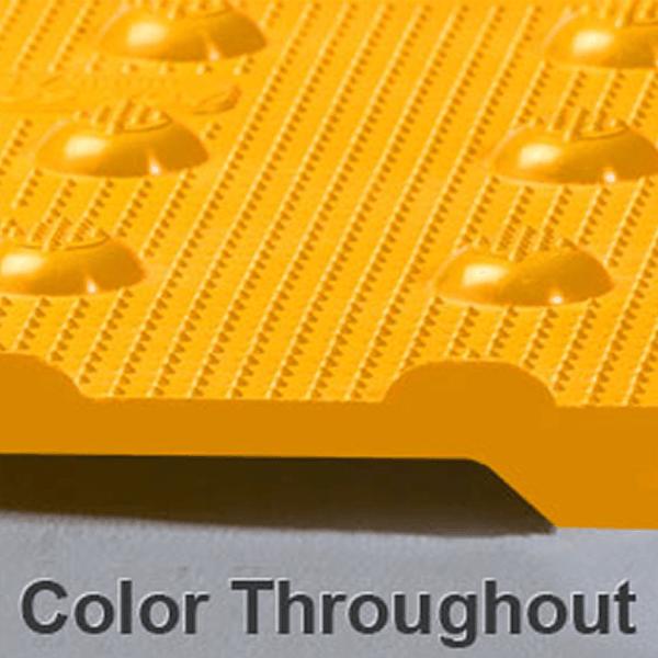 ADA Tile Color Throughout