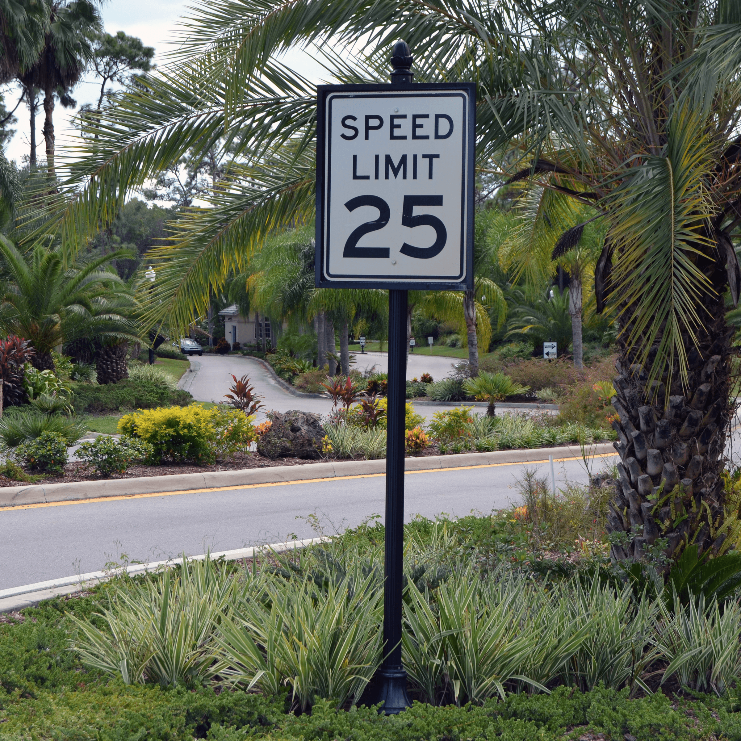 Historic Collection Speed Limit 25